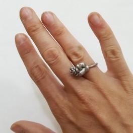Prsten z přírody (náhled)