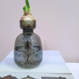 Cibulová váza (náhled)