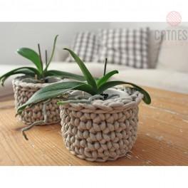 Popletené kaktusy (náhled)