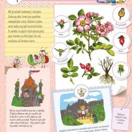 Herbář pro děti (náhled)