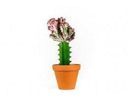 Květinou neurazíš (náhled)