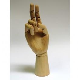 Model ruky (náhled)
