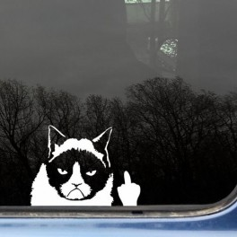 Grumpy Cat s prstem (náhled)