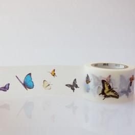 Motýlí páska (náhled)