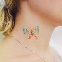 Barevný motýlek (náhled)