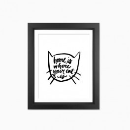 Kočičí plakát (náhled)