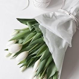 Čerstvé tulipány (náhled)