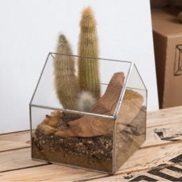 Domek pro kaktusy (náhled)