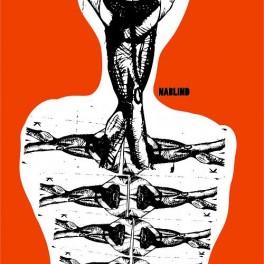 Plakát anatomie (náhled)