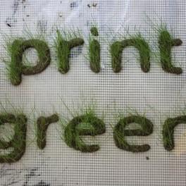 3D tisk - tráva (náhled)