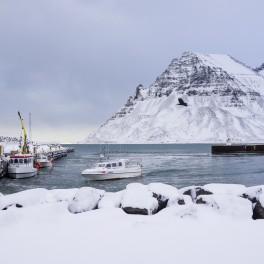 Letenka Island (náhled)
