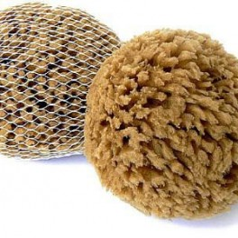 Minerální houba (náhled)