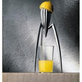 Lis na citrusy (náhled)