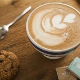 Bio káva (náhled)