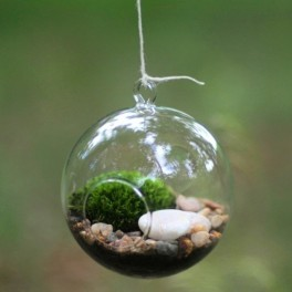 Aerárium koule (náhled)