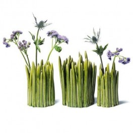 Vázy jako stonky (náhled)