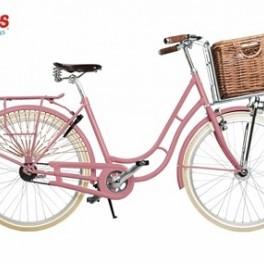 Růžové kolo (náhled)