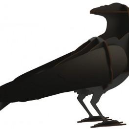 Černý pták (náhled)
