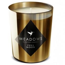 Svička Meadows (náhled)