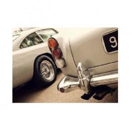 Aston Martin plakát (náhled)