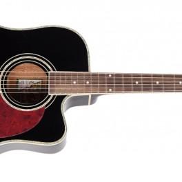 Cestovatelská kytara (náhled)