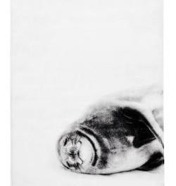Ručník s tuleněm (náhled)