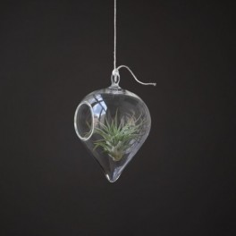 Kapky skla (náhled)