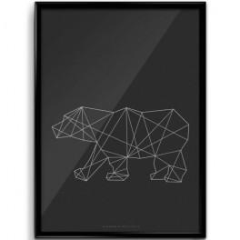 Plakát polární medvěd (náhled)