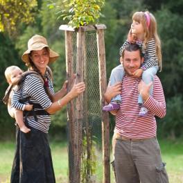 Daruj strom (náhled)