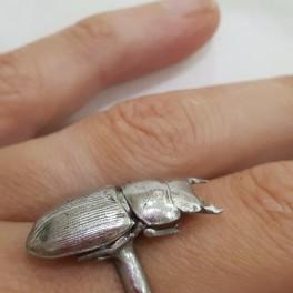 Lesní prsten (náhled)