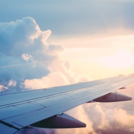 Let o přežití