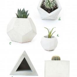 Rostlina v betonu (náhled)