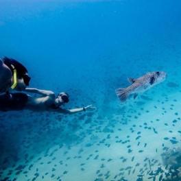 Freediving (náhled)