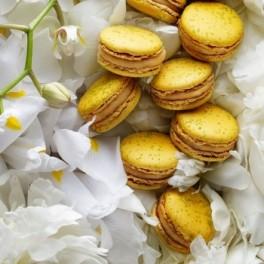 Macarons (náhled)