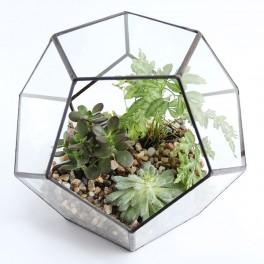 Zahradní terárium (náhled)
