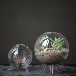 Mini terárium (náhled)