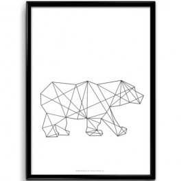 Bipolární medvěd (náhled)